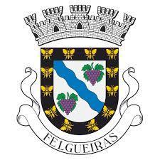 CMF - Câmara Municipal de Felgueiras